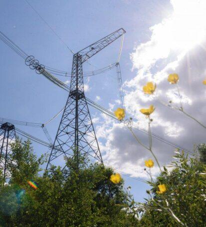 Квартальний моніторинг купівлі-продажу електроенергії